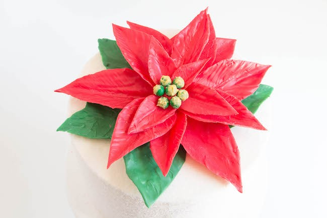 Finished Chocolate Poinsettia Cake | Erin Bakes
