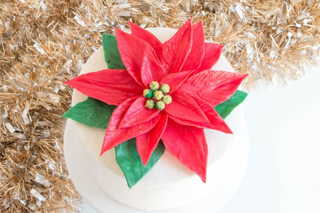 Giant Chocolate Poinsettia Cake | Erin Bakes